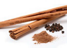 L'écorce de cannelier, un des bois odorants